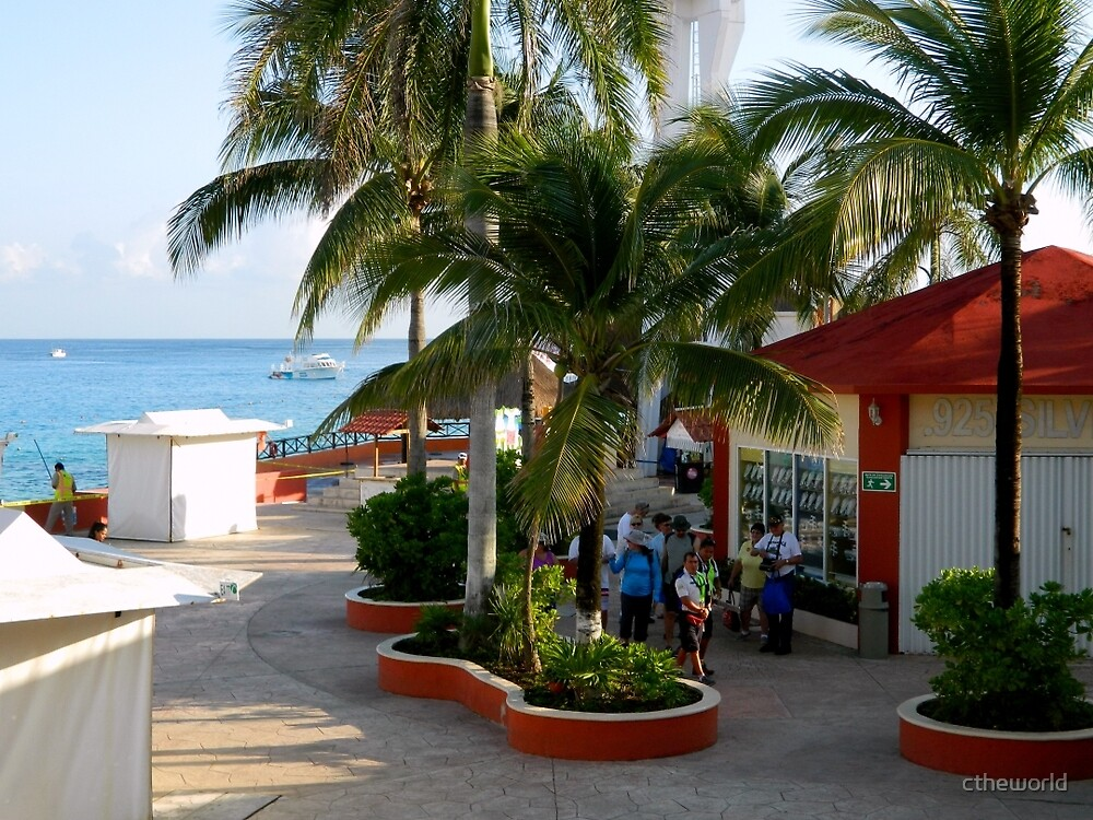 Welcome to Cozumel by ctheworld