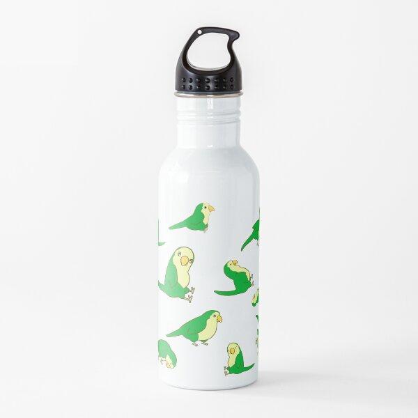 Monk Parakeet Water Bottle