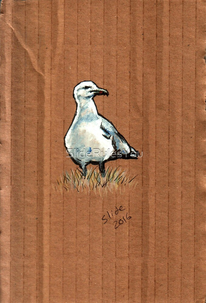 Gulls on Grass #2 by SlideRulesYou