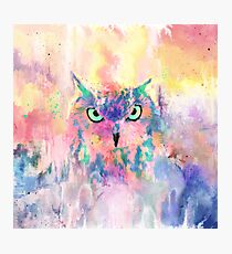 Watercolor eagle owl abstract paint Photographic Print
