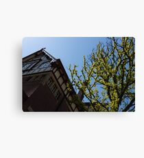 Amsterdam Spring - Characteristic Facade Plus Unusual Tree - Right Canvas Print
