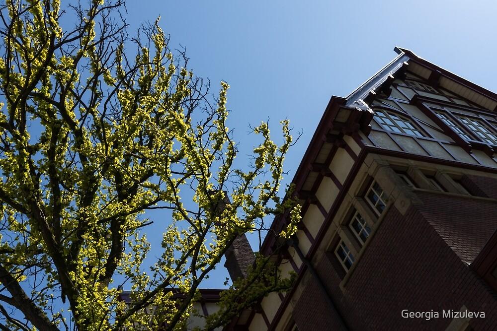Amsterdam Spring - Characteristic Facade Plus Unusual Tree - Left by Georgia Mizuleva