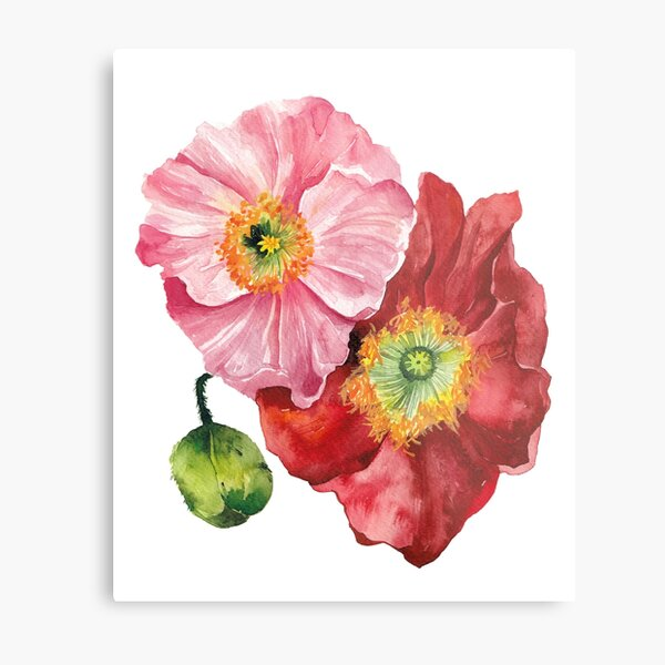 Pink and Red Poppies Metal Print