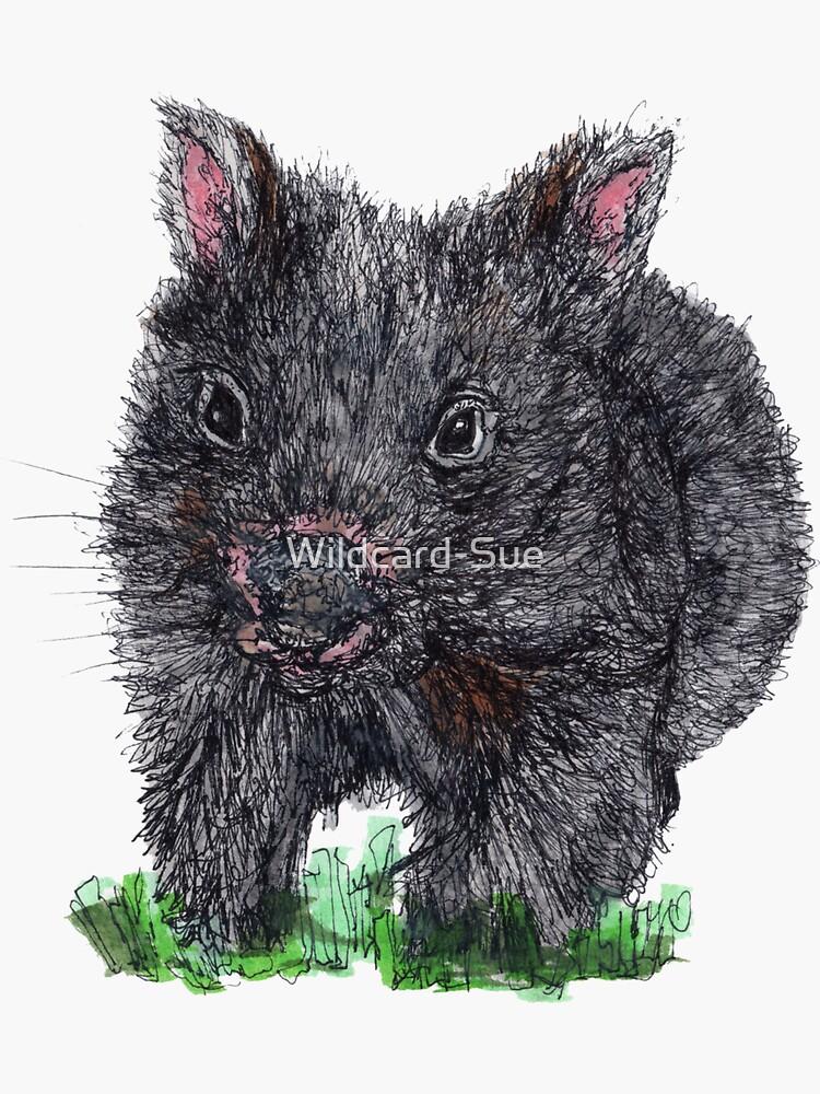 Billie the Baby Wombat by Wildcard-Sue