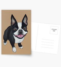 Boston Terrier Postcards