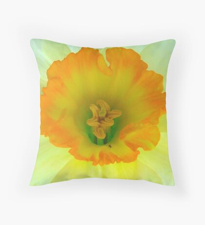 Daffodil close-up with visitor Throw Pillow