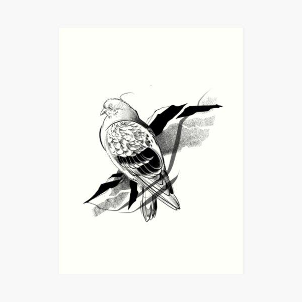 Pigeon I Art Print