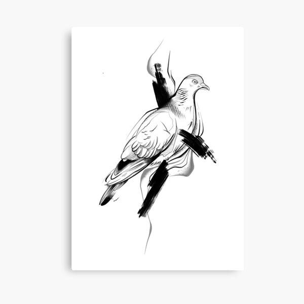 Pigeon II Canvas Print