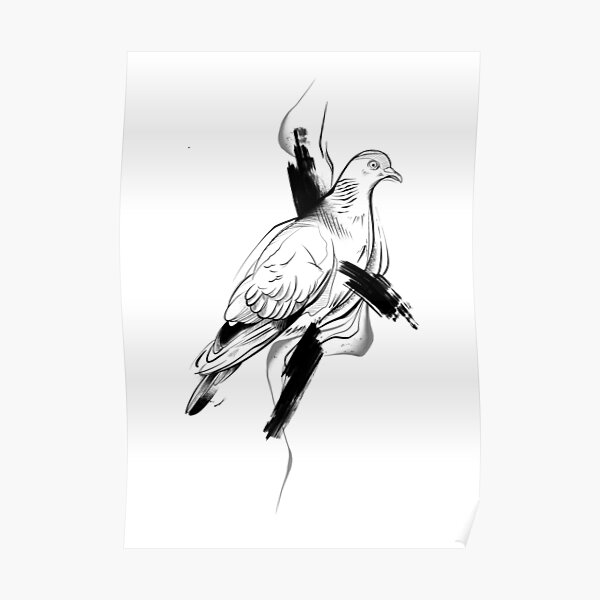 Pigeon II Poster