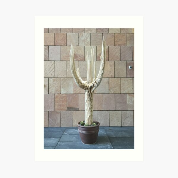 2016 Cactus Skelleton Art Print