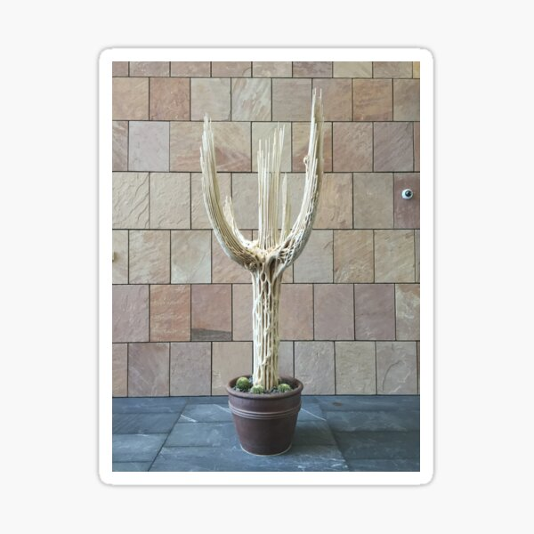 2016 Cactus Skelleton Sticker