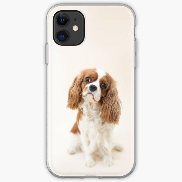 Cavalier King Charles Spaniel blenheim iPhone Soft Case