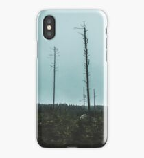 Desolate Trees iPhone Case