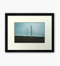 Desolate Trees Framed Print