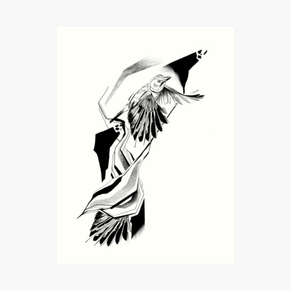 Eurasian Jay Art Print