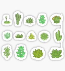 Succulents Sticker