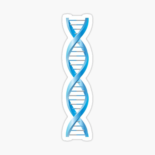 Vertical segment of blue human DNA helix Sticker
