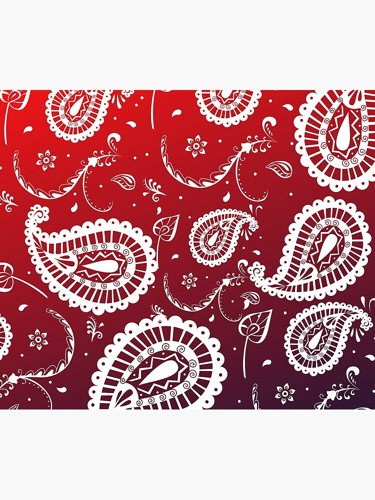 Paisley Passion by alizye