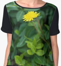 A Dandelion in the Spring Women's Chiffon Top