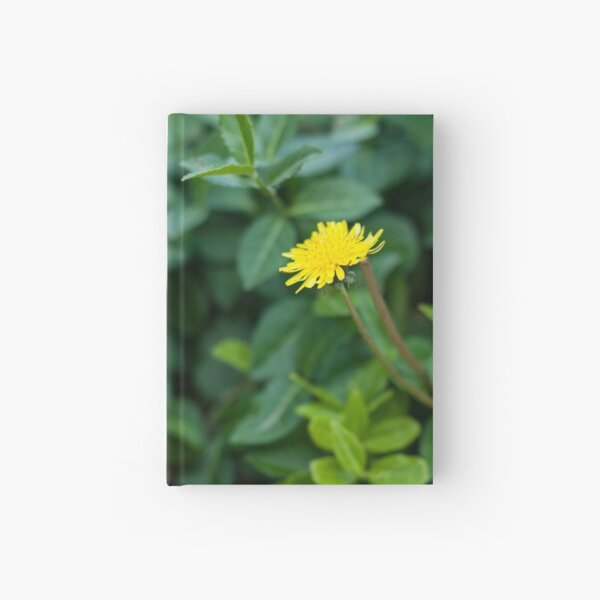 A Dandelion in the Spring Hardcover Journal