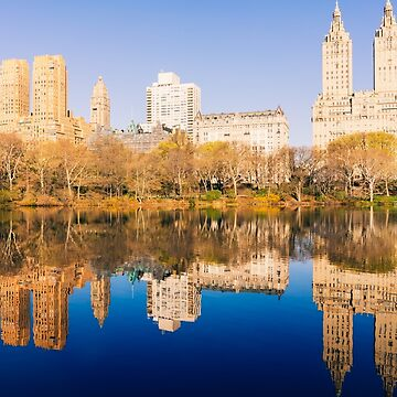 Magic of Central Park by romankphoto