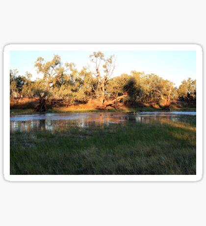 Early morning Camooweal Billabong Queensland Sticker