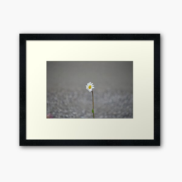 Alone 17.09.2020 Framed Art Print