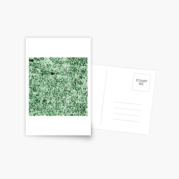 """""""Patterns of Nature"""" Snowy Plants in the Field, Piliscsev - Cold Green Postcard"""