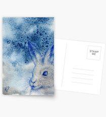 Arctic Hare Postcards