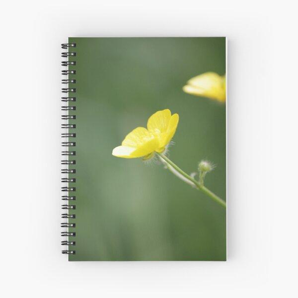 Buttercup in Summer Sun Spiral Notebook