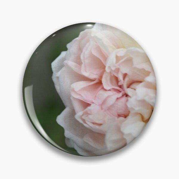 Wild Cottage Rose Pin