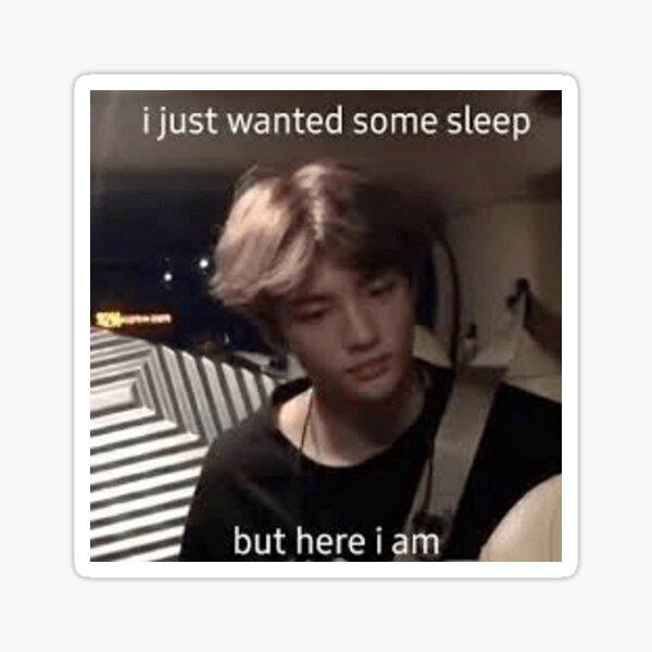 Copy of hyunjin stray kids meme Sticker