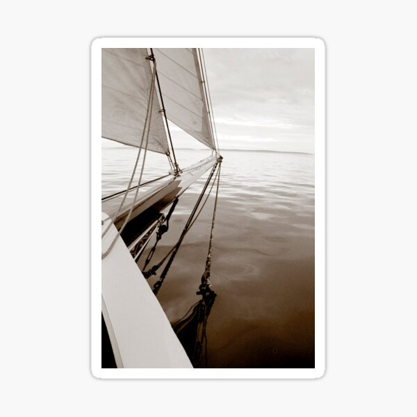 Sailing on Calm Waters Sticker
