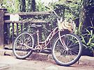Banana Bike by Beth Thompson