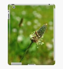 Tiny World iPad Case/Skin