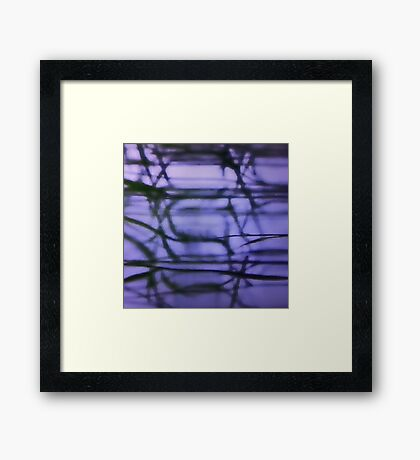Serena 1 Framed Print