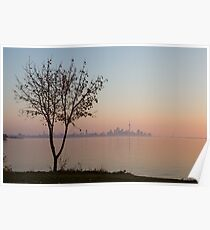 Soft, Pink Morning on the Lake Shore Poster