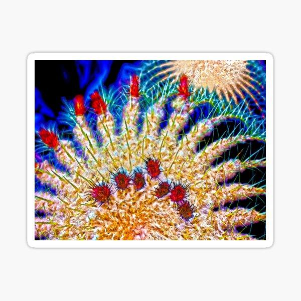 Color Me Cactus Sticker