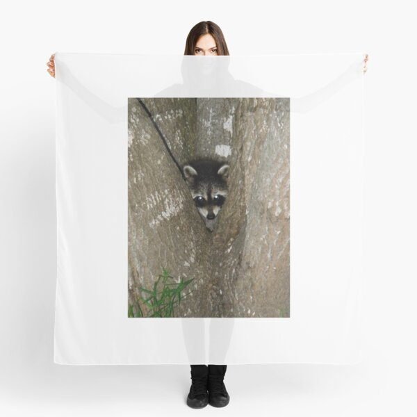 Baby Raccoon and Jesus  Scarf