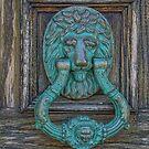 Lion's Head Door Knocker on Weathered Wood Door by Gerda Grice