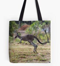Kangaroo on Mt. Lofty, Adelaide  Tote Bag