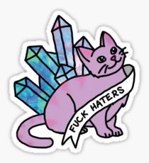haters crystal cat cosmic kitten meme cute sassy feminist print Sticker