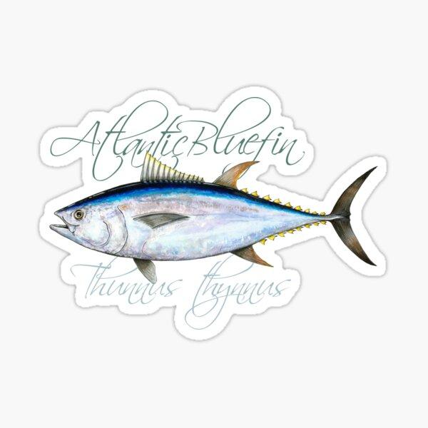 Atlantic bluefin tuna · Thunnus thynnus Sticker