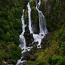 Waipunga Falls  by Linda Cutche