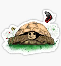 I Love my Tortoise cute cartoon Sticker
