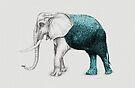 The Stone Elephant by Beth Thompson