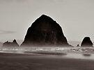 Haystack Rock by Beth Thompson