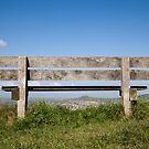 The bench on the common by Jeff  Wilson