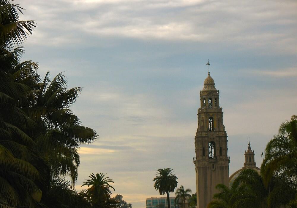 San Diego by donnagrayson
