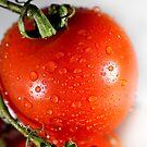 Tomato by ANDIBLAIR